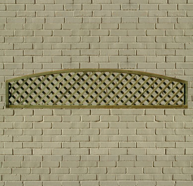 Arch-Top Trellis picture